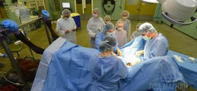 Германы малын эмч нар хагалгаанд орж байгаа нь