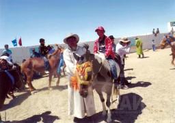 Айргийн гуравт хурдалсан Хүрэлсүхийн хар алаг морь