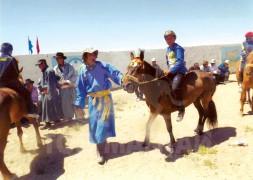 Айргийн дөрөвт хурдалсан Дамдингийн хээр морь