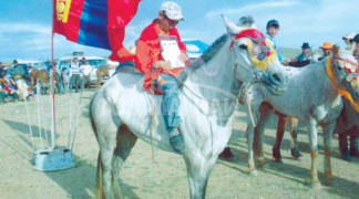 Айргийн гуравт хурдалсан аймгийн Алдарт уяач Ж.Хүрэлбаатарын шувуун бор морь