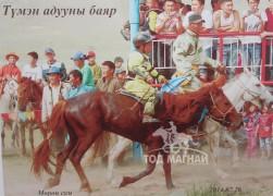 2014 он. Мөрөн сумын Түмэн адууны баярт зээрд азарга айргийн гуравт
