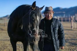 Монгол улсын Алдарт уяач С.Мөнхбат: Европын хамгийн алдартай азарга Галилеогийн төлийг Монголдоо авчирч, цэвэр адууны үржүүлэг хийж байна