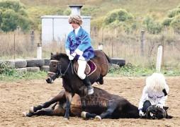 Унасан морь босоод давхихыг харуулахгүй бол кинонд оруулахыг хориглодог