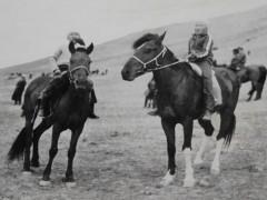 Аймгийн Алдарт уяач Ч.Бузанков: Зүүн зүгээс авсан адуунууд унаган морьдыг минь гүйцэж давхиж чадаагүй